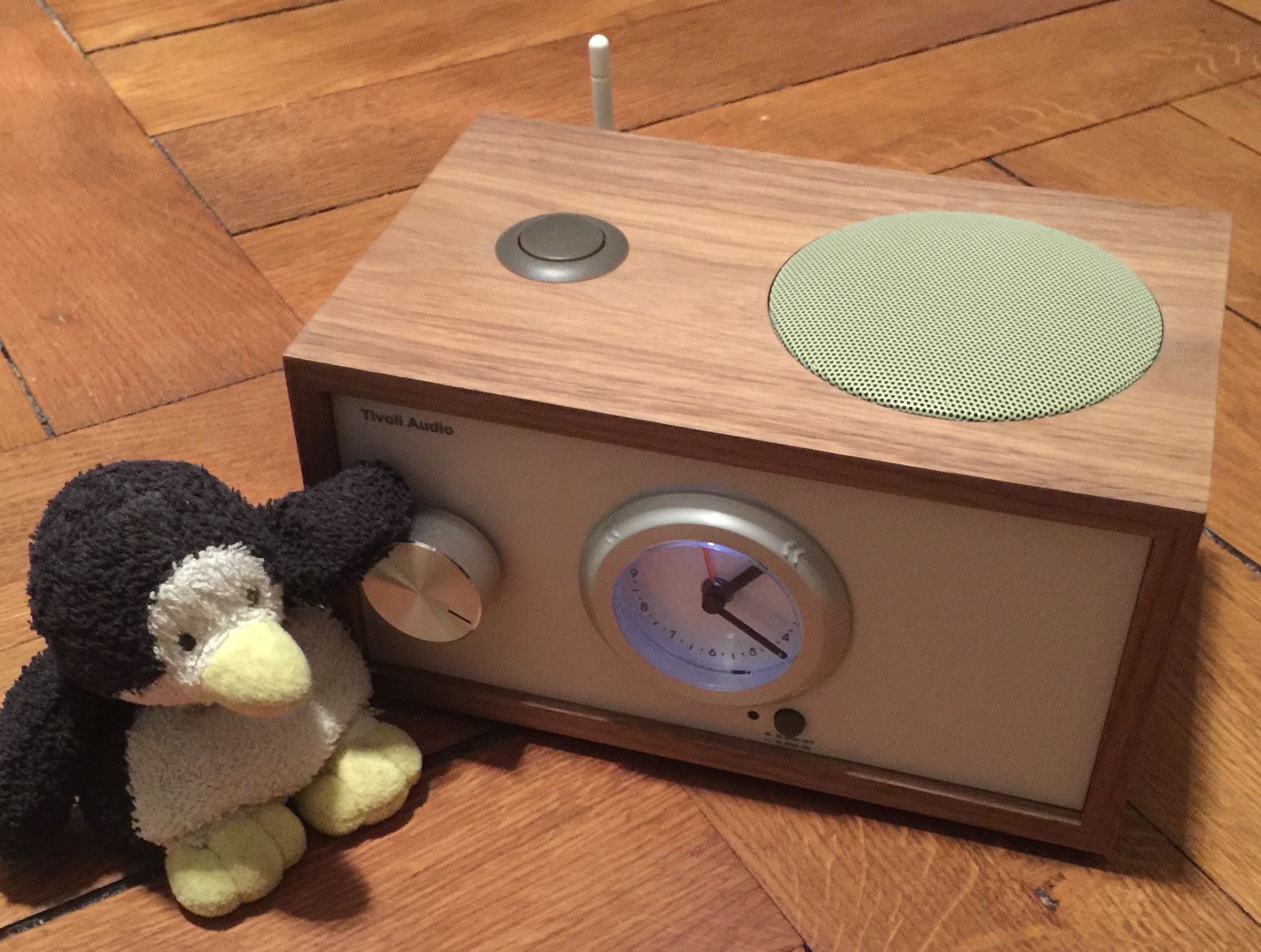das tivoli squeezebox radio penguin loves music. Black Bedroom Furniture Sets. Home Design Ideas