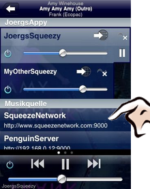Select SqueezeNetwork